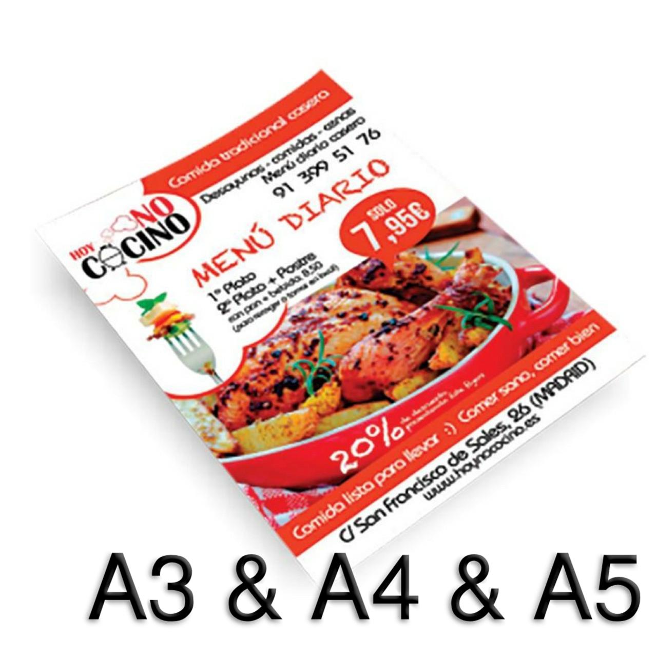 Flyer (A3 & A4 & A5)